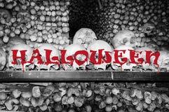 Halloween skulls and bones. Picture of Halloween skulls and bones decoration Stock Image
