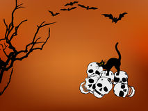 Halloween skulls and cat Stock Photography