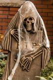 Halloween Skulls and Decorations Stock Photo