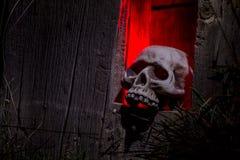 Halloween Skulls and Decorations Stock Image