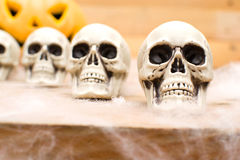 Halloween skulls Stock Photo