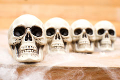 Halloween skulls Stock Photos