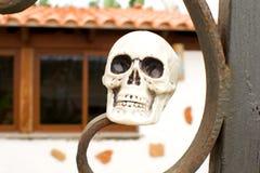Halloween skulls Stock Images