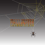 Halloween spider Royalty Free Stock Photos
