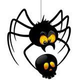 Halloween Spider Cartoon holding Black Skull. Funny and Spooky Halloween Spider Cartoon Character holding a Black Skull. Original Vector Graphic Art Copyright Royalty Free Stock Photo