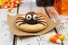 Halloween spider cookie on rustic white wood Royalty Free Stock Photography