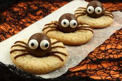 Halloween spider cookies with orange and black background Royalty Free Stock Photo