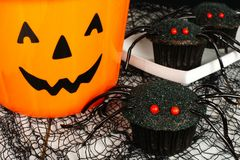 Halloween spider cupcakes with jack o lantern candy pail Stock Image