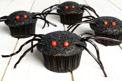 Halloween spider cupcakes on white wood Royalty Free Stock Photo