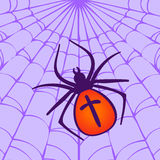 Halloween Spider hanging on the web Stock Photos