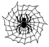Halloween spider on the net. Black halloween spider on the net isolated at the white background Royalty Free Stock Images