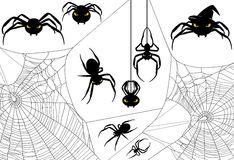 Halloween Spider Set Stock Photos