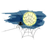 Halloween spider and spiderweb  Royalty Free Stock Photos