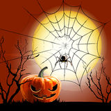 Halloween spider and spiderweb  Stock Photography