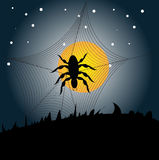 Halloween Spider. Vector illustration of a spider, web and the moon on a dark background Royalty Free Stock Photo