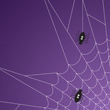 Halloween Spider Web Stock Images