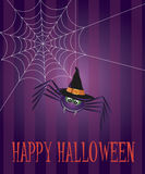 Halloween Spider and Web Illustration Stock Photo