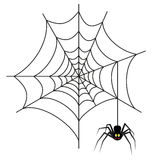 Halloween spider on web Royalty Free Stock Image