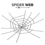 Halloween Spider Web Vector. Black Spider Web Isolated On White. Monochrome Hector Venom Cobweb For Halloween Design. Halloween Spider Web Vector. Black Spider Royalty Free Stock Photos