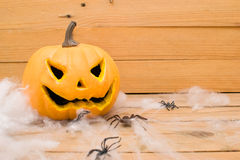 Halloween spiders  and pumpkin Royalty Free Stock Images