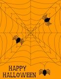 Halloween Spiderweb bakgrund Arkivfoto