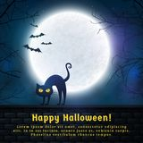 Halloween spooky background. Happy Halloween! Background with full moon and evil cat. Spooky night. Banner with copy space for greetings, promo text or Stock Photo