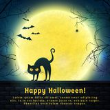 Halloween spooky background. Happy Halloween! Background with full moon and evil cat. Spooky night. Banner with copy space for greetings, promo text or Stock Image
