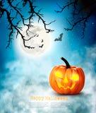 Halloween spooky background. Stock Image