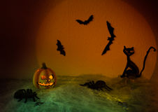 Halloween. Spooky Halloween Night,,halloween pumpkin, flying bats and a black cat on abstract background with big moon and spiders Royalty Free Stock Photography
