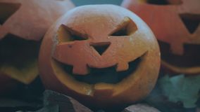 Halloween spooky pumpkins with scary carved faces stock video footage