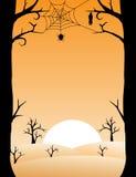Halloween spooky trees background Stock Image