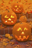 halloween stålarlyktor o Arkivfoto