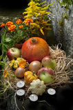 Halloween still life Stock Photography