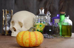 Halloween still life with pumpkin and potions Stock Image