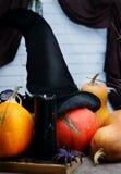 Halloween still life Stock Photos