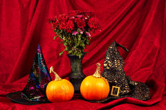 Halloween still life with pumpkins, witch hats and autumn flowers. Arrangement for Halloween, featuring a couple of witch hat, orange pumpkins and a vase with Stock Photo
