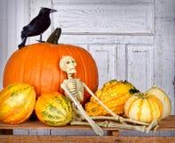 Halloween stilleben arkivbilder