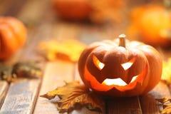 halloween stålarlykta o Royaltyfri Bild