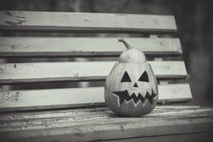 halloween svart white pumpa ligger på en bänk Arkivfoton