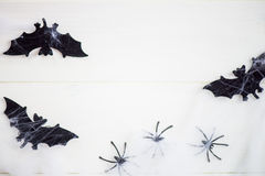 Halloween Symbols Bats, Web and Black Spiders on Wooden Backgrou Stock Image