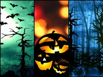 Halloween symbols pumpkin bats forest background Royalty Free Stock Photography