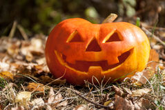 Halloween tête de Jack Photo libre de droits