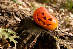 Halloween tête de Jack Images libres de droits