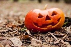 Halloween tête de Jack Photo stock