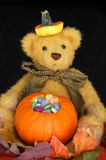 Halloween Teddy with Candy in a Pumpkin Stock Image