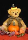 Halloween Teddybear. A cute teddy bear with a pumpkin hat and a pumpkin Stock Photos