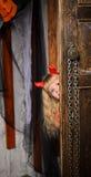 Halloween-Teufelmädchen, das aus Tür heraus schaut Lizenzfreie Stockfotografie