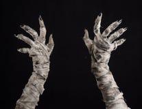 Halloween-Thema: schreckliche alte Mamahände auf einem schwarzen Hintergrund Lizenzfreie Stockfotos