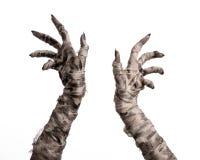 Halloween-Thema: schreckliche alte Mamahände auf einem weißen Hintergrund Lizenzfreies Stockbild