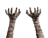 Halloween-Thema: schreckliche alte Mamahände auf einem weißen Hintergrund Lizenzfreies Stockfoto